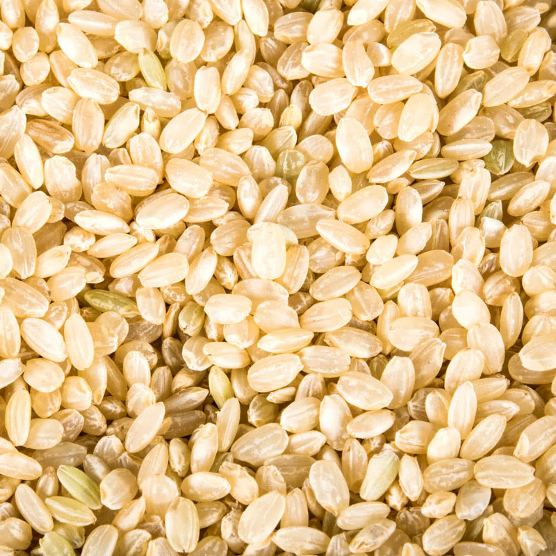 Short Grain Brown Rice Organic